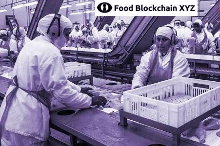 食品供应链XYZ以以太坊区块链跟踪供应链